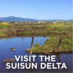 Visit-The-SuiSun-Delta