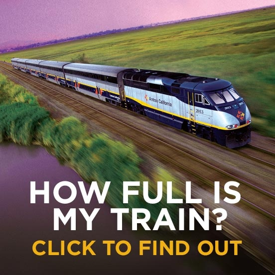 How Full is My Train?